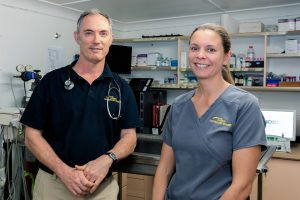 Cooroy Vets Consultations